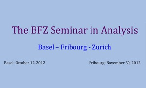 BFZ Analysis Seminar
